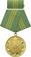 B.0141bTreue Dienst Medaille MdI Gold