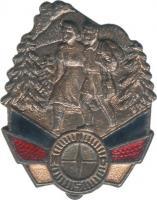 B.0966c Touristenabzeichen Bronze