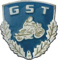 B.3229h GST Motorsport-Leistungsabzeichen Silber