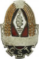 B.3282b GST Amateurfunk Leistungsabzeichen Silber