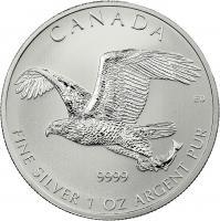 Canada Silber-Unze 2014 Weißkopfseeadler
