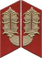 General-Kragenspiegel NVA Heer / Staatssicherheit (spitze Form für Mantel)