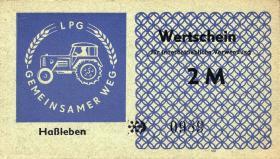 "L.053.4 LPG Haßleben ""Gemeinsamer Weg"" 2 Mark (1)"