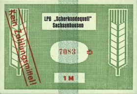 """L.123.3 LPG Sachsenhausen """"Scherkondequell"""" 1 Mark (1)"""
