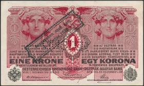 Österreich / Austria P.041 1 Krone 1920 MUSTER (1/1-)