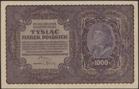 Polen / Poland P.029 1000 Marek 1919 (1/1-)