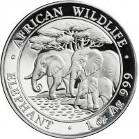 Somali Rep. Silber-Unze 2013 Elefanten