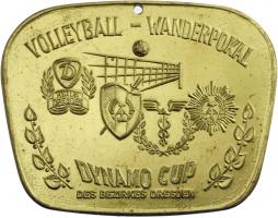 Medaille Volleyball-Wanderpokal - DYNAMO-CUP des Bezirkes Dresden - Stufe Gold