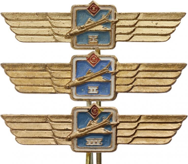 B.0682d-684d Klass. Abzeichen Flugzeugführer Miniatur komplett