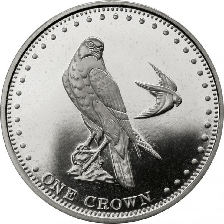 Gough Island1 Crown 2010 Falke
