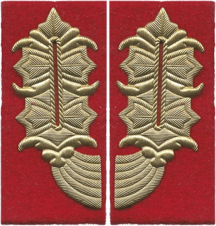 General-Kragenspiegel NVA Heer / Staatssicherheit (gerade Form für Jacke)