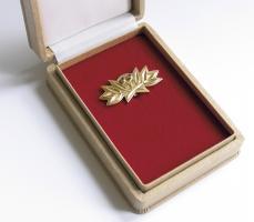 B.0002g Ehrenspange zum Vaterländischen Verdienst-Orden