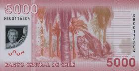 Chile P.163b 5000 Pesos 2011 Polymer (1)