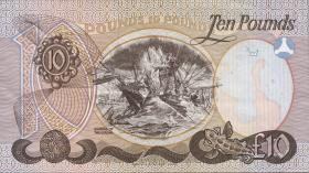 Nordirland / Northern Ireland P.007a 10 Pounds 1988 (2)
