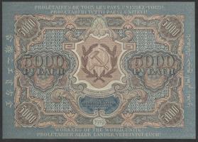 Russland / Russia P.105a 5000 Rubel 1919 (1)